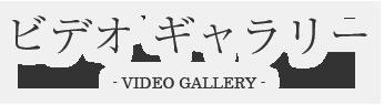 ビデオギャラリー